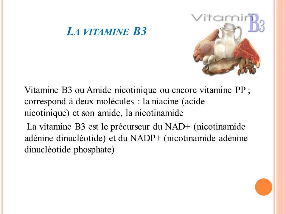 La vitamine B3