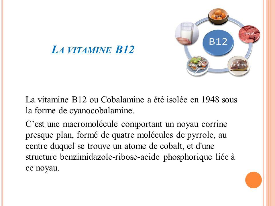 La vitamine B12 La vitamine B12 ou Cobalamine a été isolée en 1948 sous la forme de cyanocobalamine.