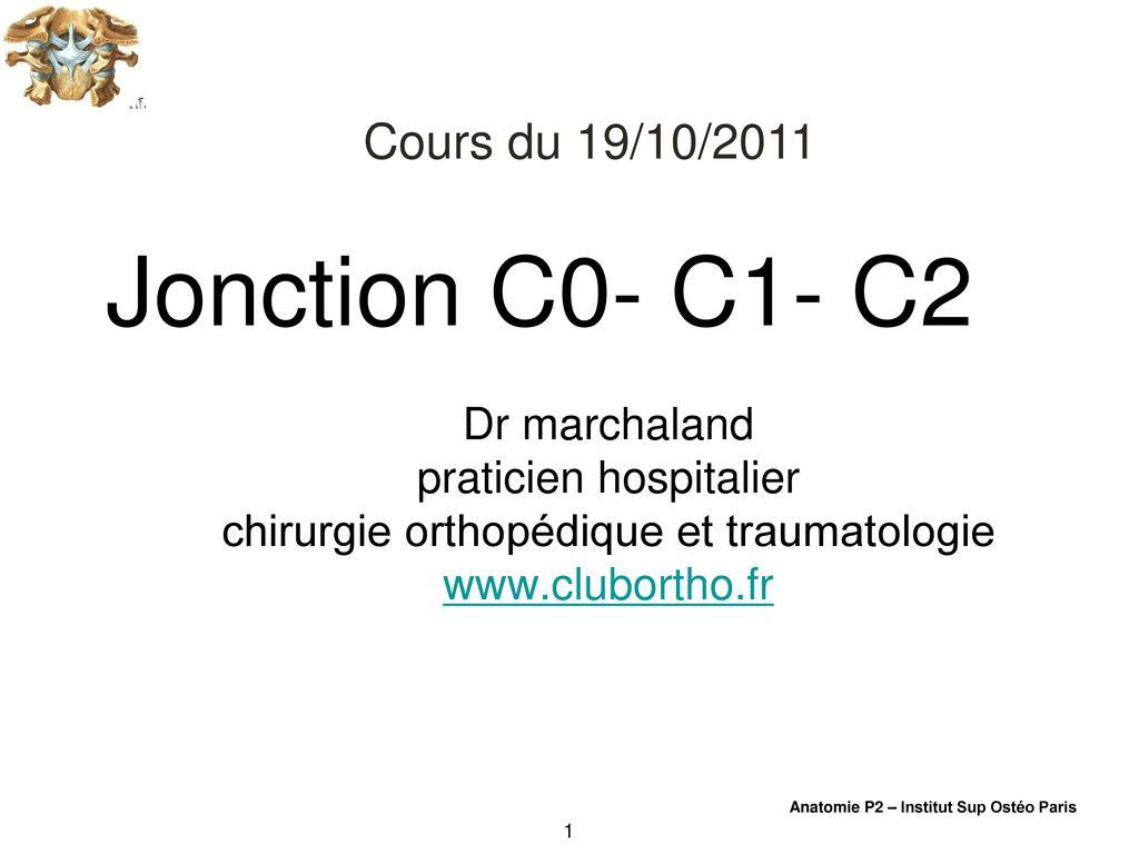 Charmant C2 Wirbel Anatomie Galerie - Physiologie Von Menschlichen ...