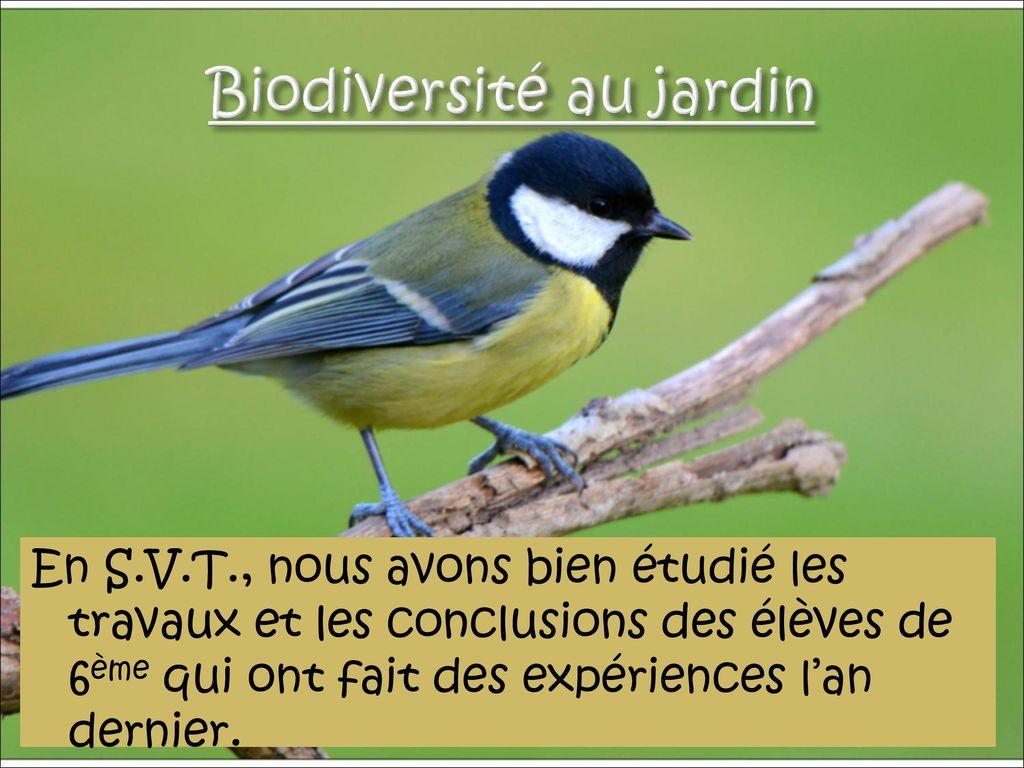 biodiversité svt 3ème
