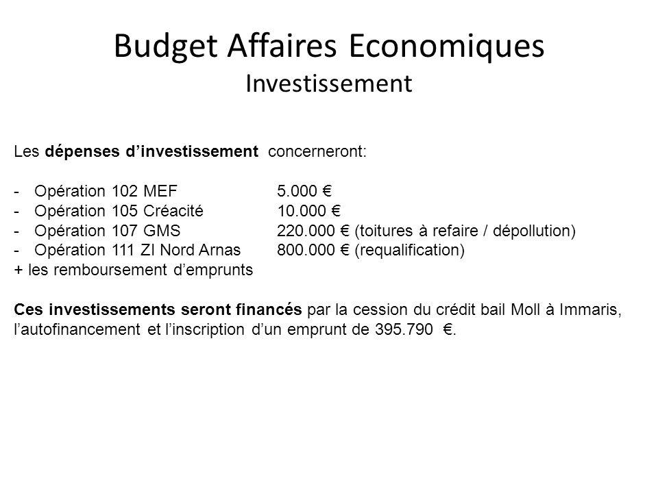 Budget Affaires Economiques Investissement