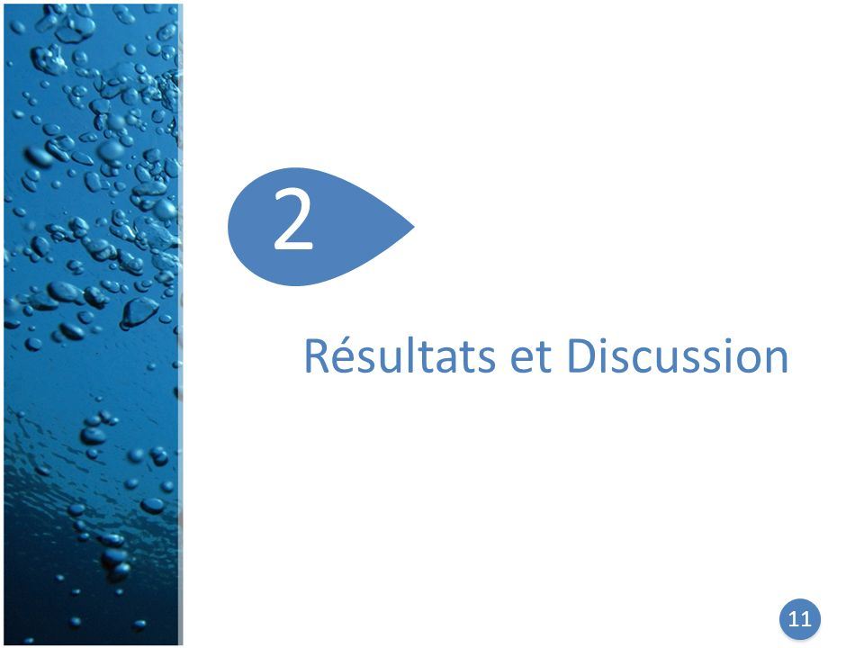 2 Résultats et Discussion