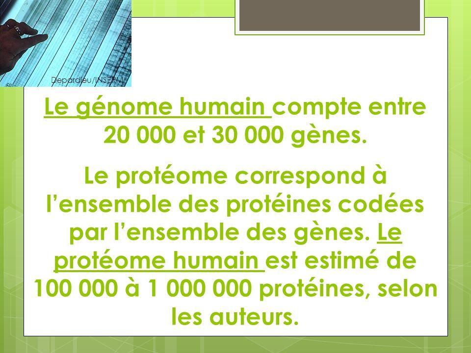 Depardieu/INSERM