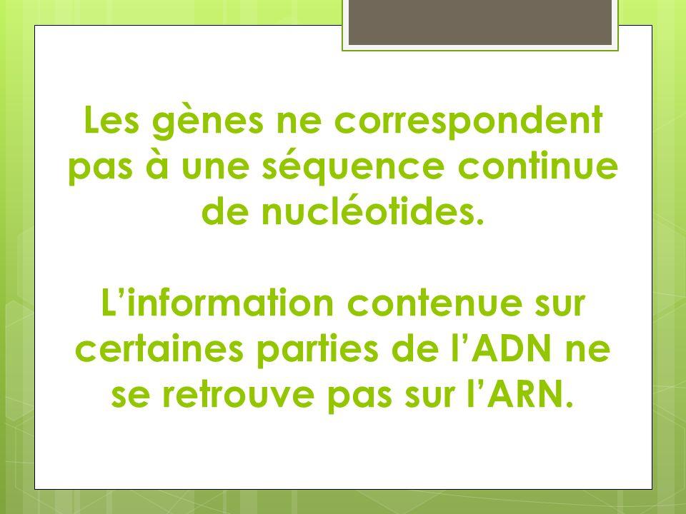 Les gènes ne correspondent pas à une séquence continue de nucléotides