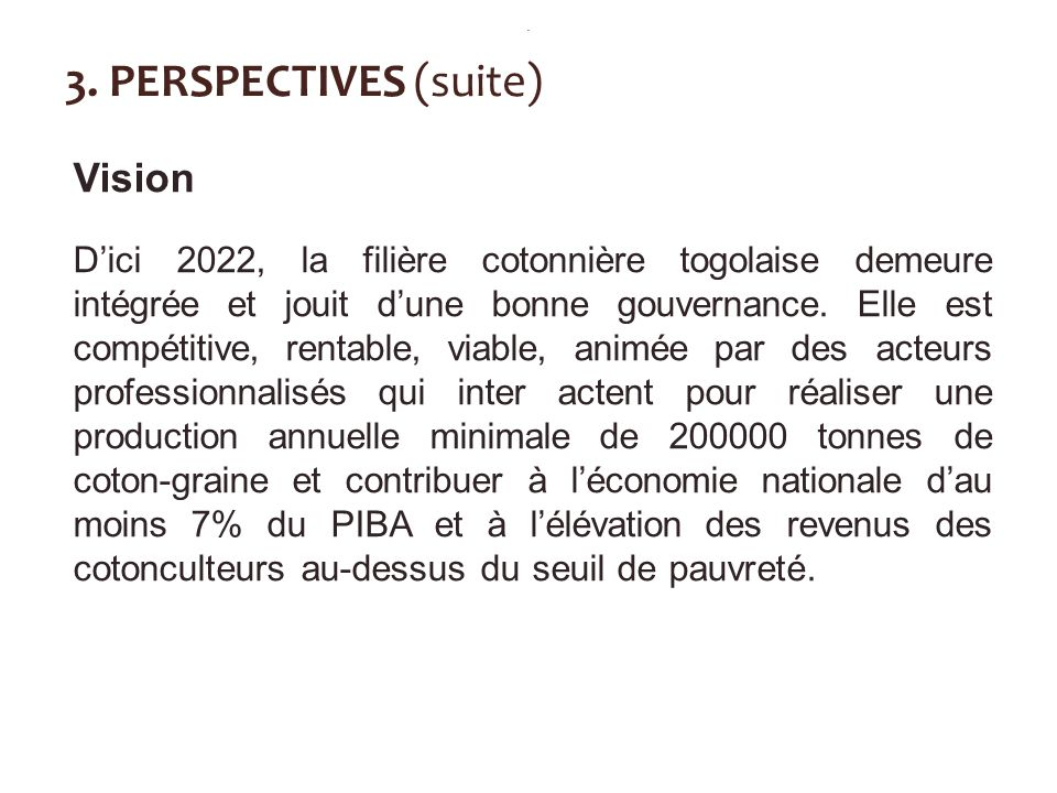 3. PERSPECTIVES (suite) Vision