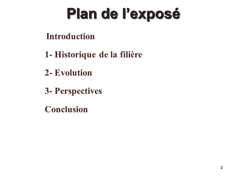 Plan de l'exposé 1- Historique de la filière 2- Evolution