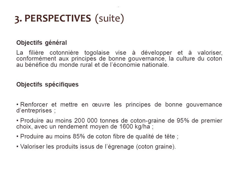 3. PERSPECTIVES (suite) Objectifs général