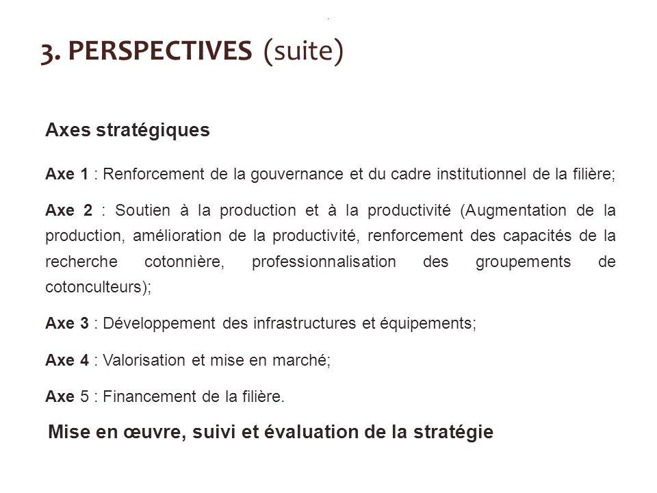 3. PERSPECTIVES (suite) Axes stratégiques