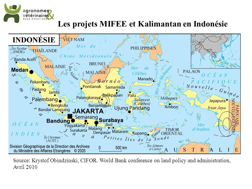 Les projets MIFEE et Kalimantan en Indonésie