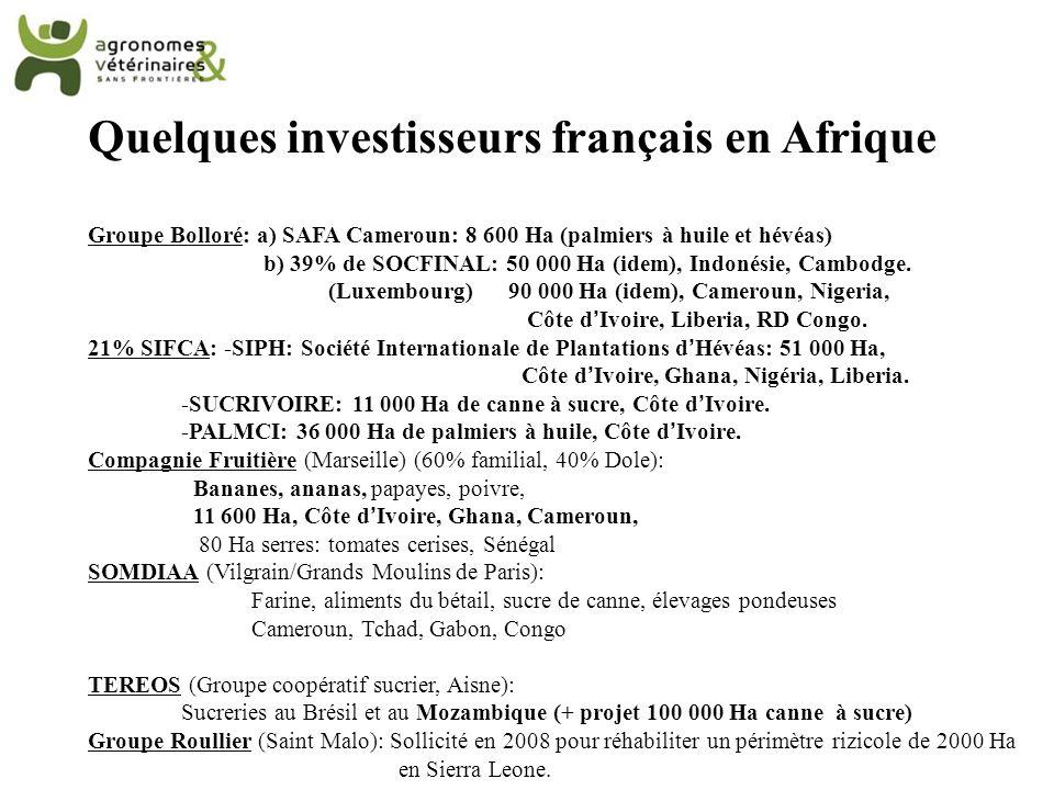 Quelques investisseurs français en Afrique