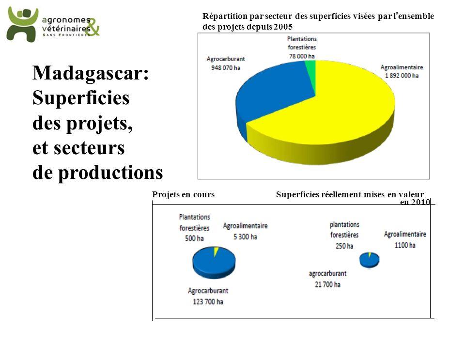 Madagascar: Superficies des projets, et secteurs de productions