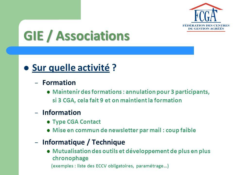GIE / Associations Sur quelle activité Formation Information