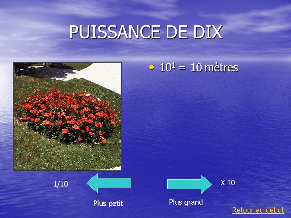 PUISSANCE DE DIX 101 = 10 mètres X 10 1/10 Plus grand Plus petit