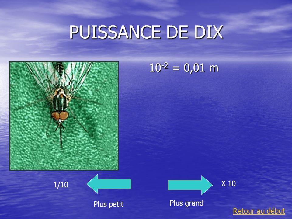 PUISSANCE DE DIX 10-2 = 0,01 m X 10 1/10 Plus grand Plus petit