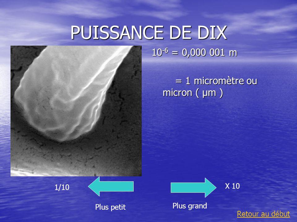 PUISSANCE DE DIX 10-6 = 0,000 001 m = 1 micromètre ou micron ( µm )