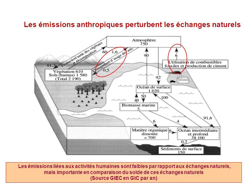 Les émissions anthropiques perturbent les échanges naturels