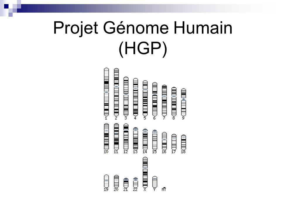 Projet Génome Humain (HGP)