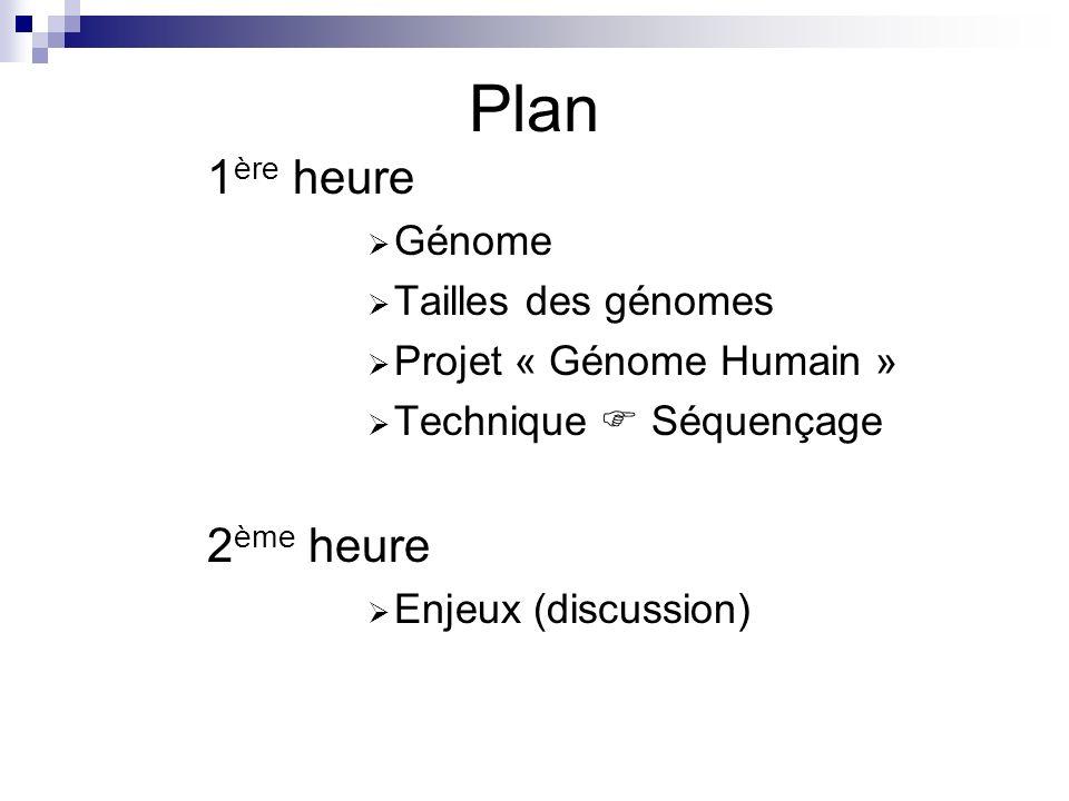 Plan 1ère heure 2ème heure Génome Tailles des génomes