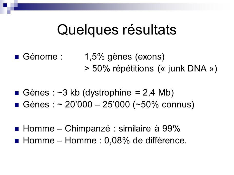 Quelques résultats Génome : 1,5% gènes (exons)