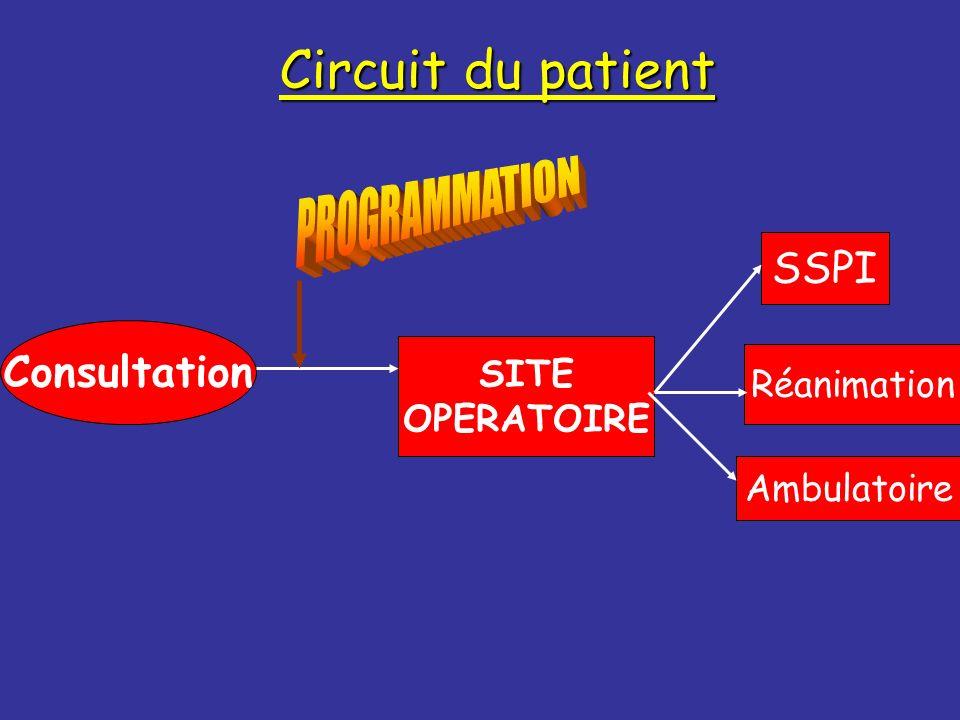 Circuit du patient PROGRAMMATION SSPI Consultation SITE Réanimation