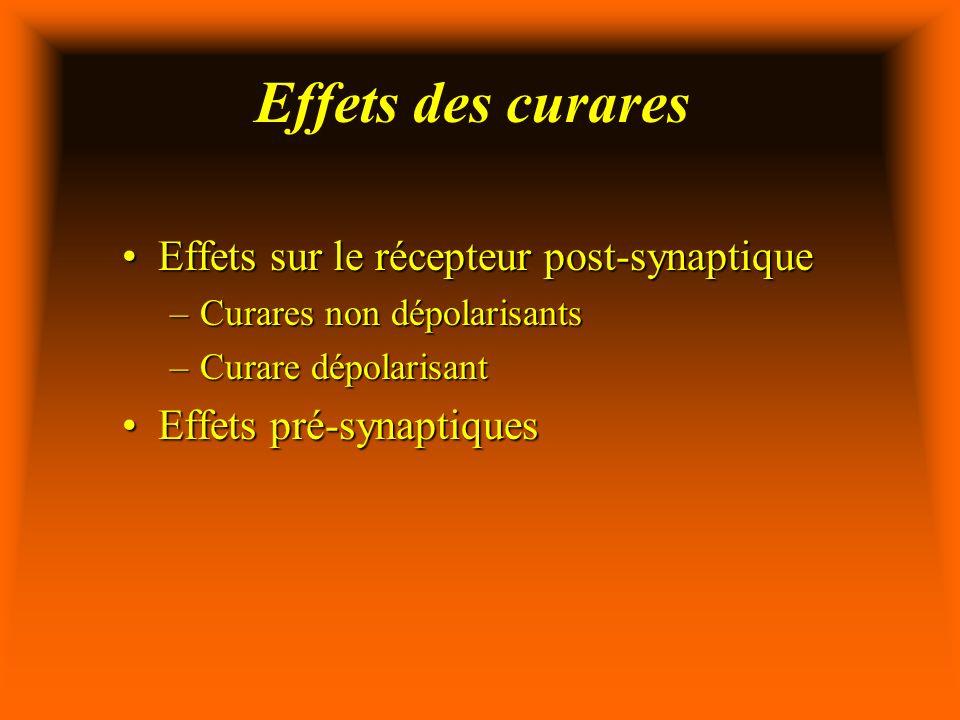 Effets des curares Effets sur le récepteur post-synaptique