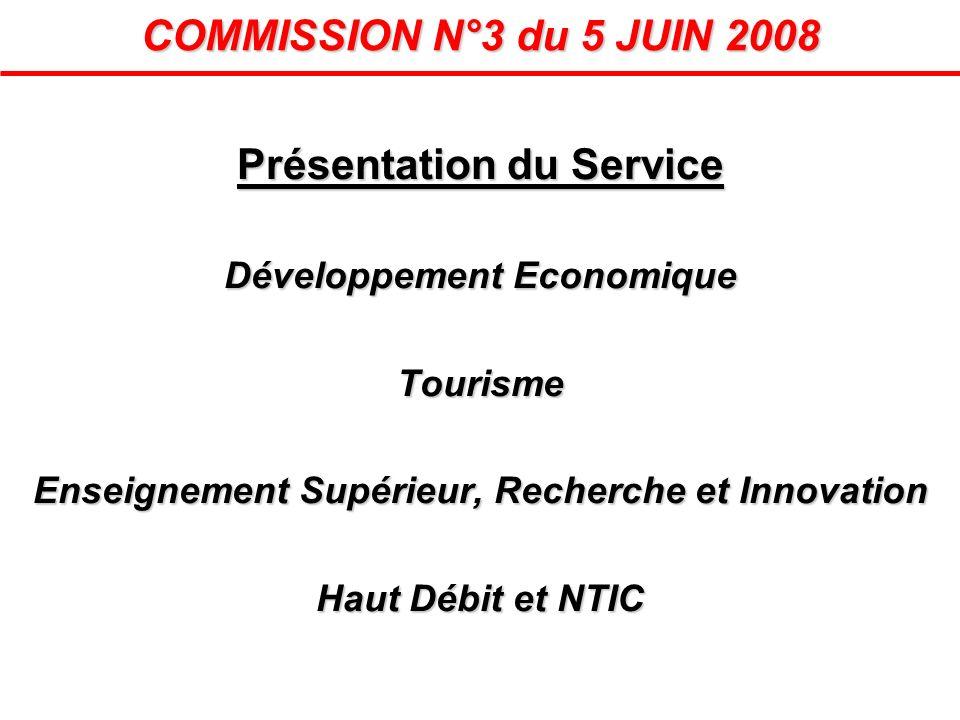 COMMISSION N°3 du 5 JUIN 2008 Présentation du Service