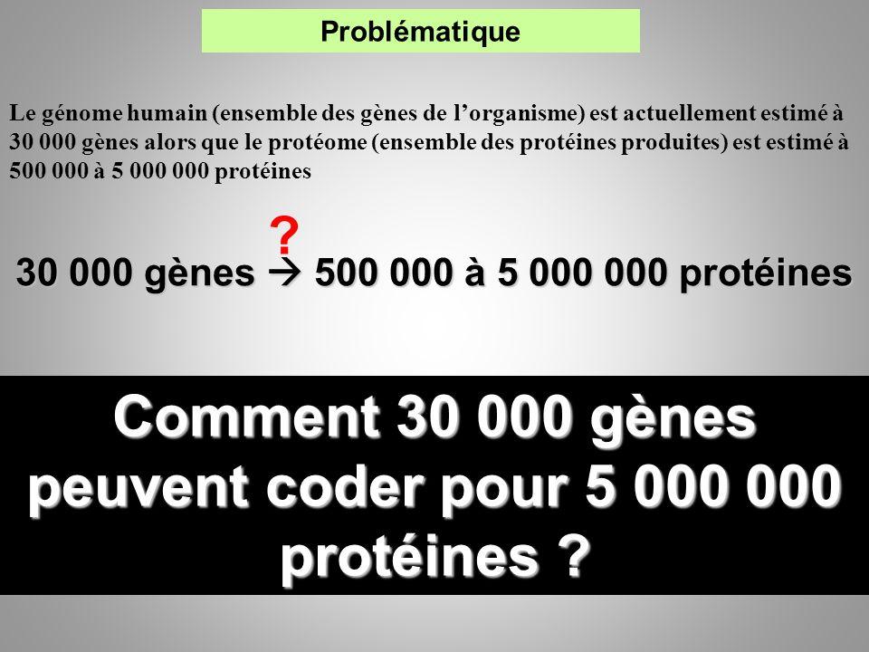 Comment 30 000 gènes peuvent coder pour 5 000 000 protéines
