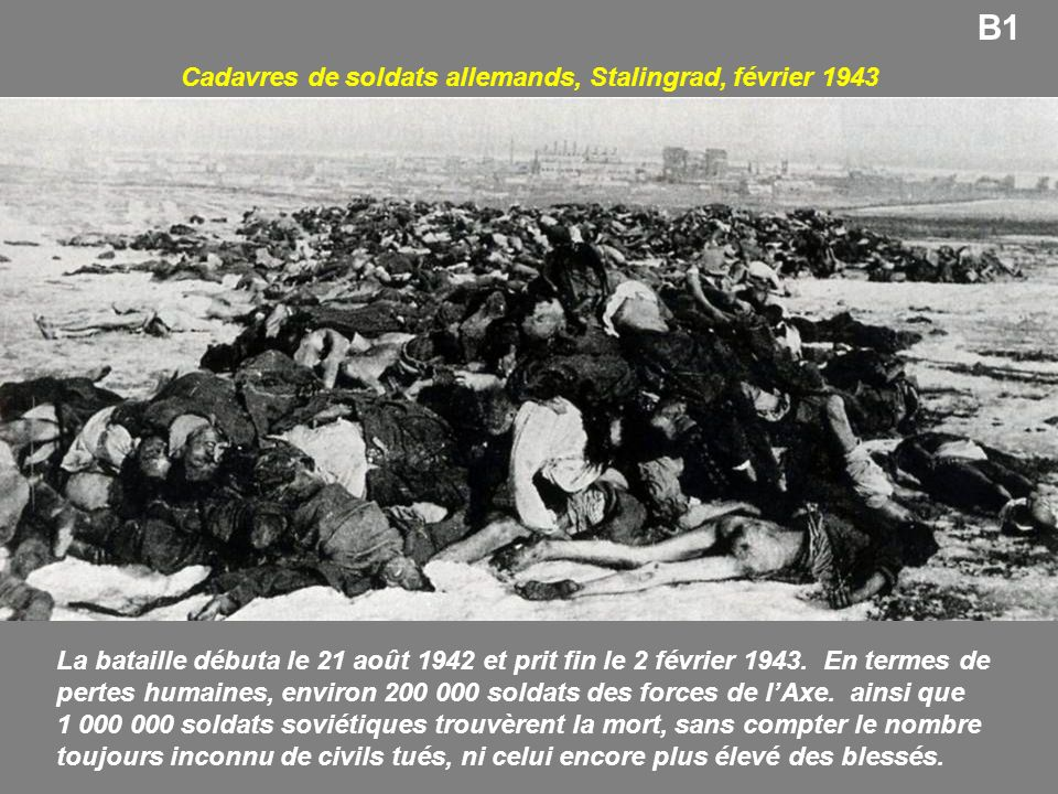 Cadavres de soldats allemands, Stalingrad, février 1943