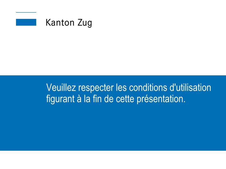 Veuillez respecter les conditions d utilisation figurant à la fin de cette présentation.