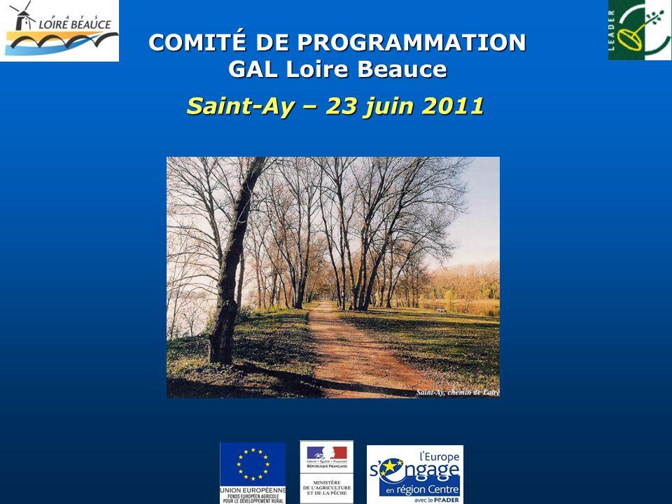 COMITÉ DE PROGRAMMATION