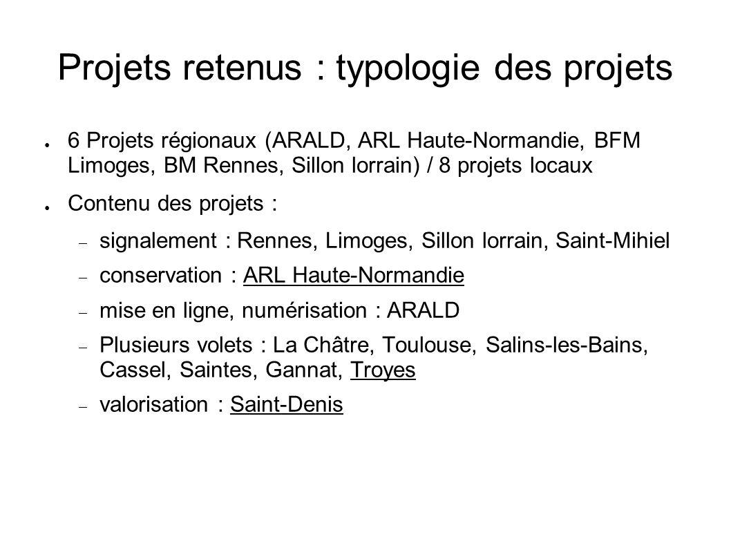 Projets retenus : typologie des projets