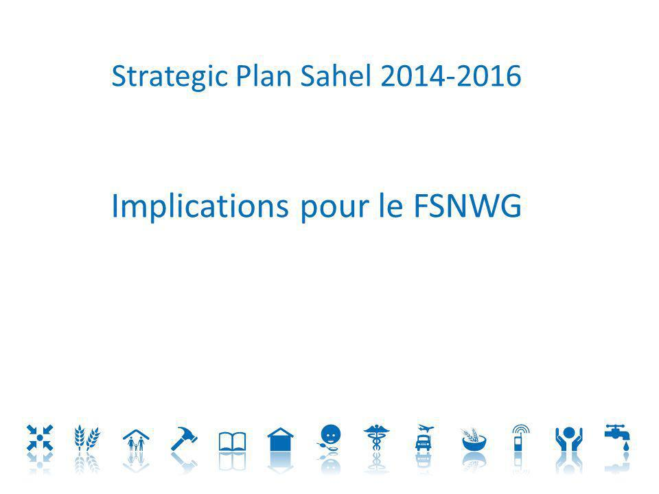 Implications pour le FSNWG