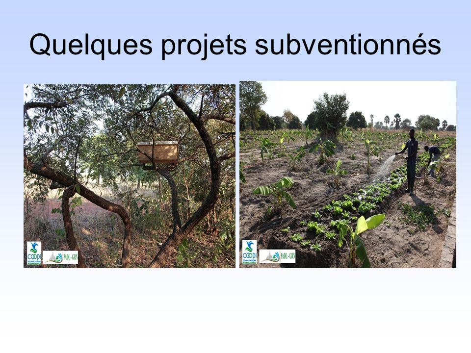 Quelques projets subventionnés