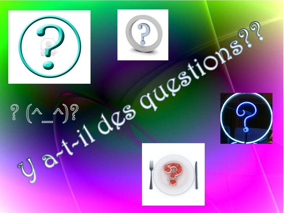 Y a-t-il des questions (^_^)
