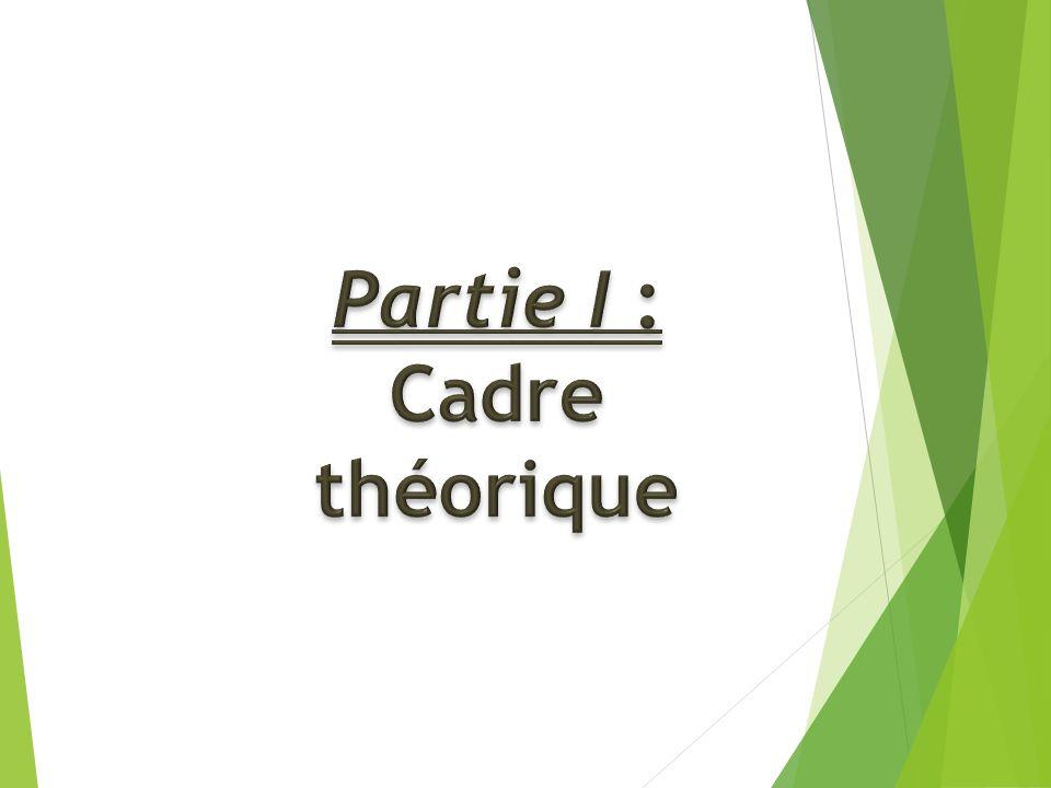 Partie I : Cadre théorique