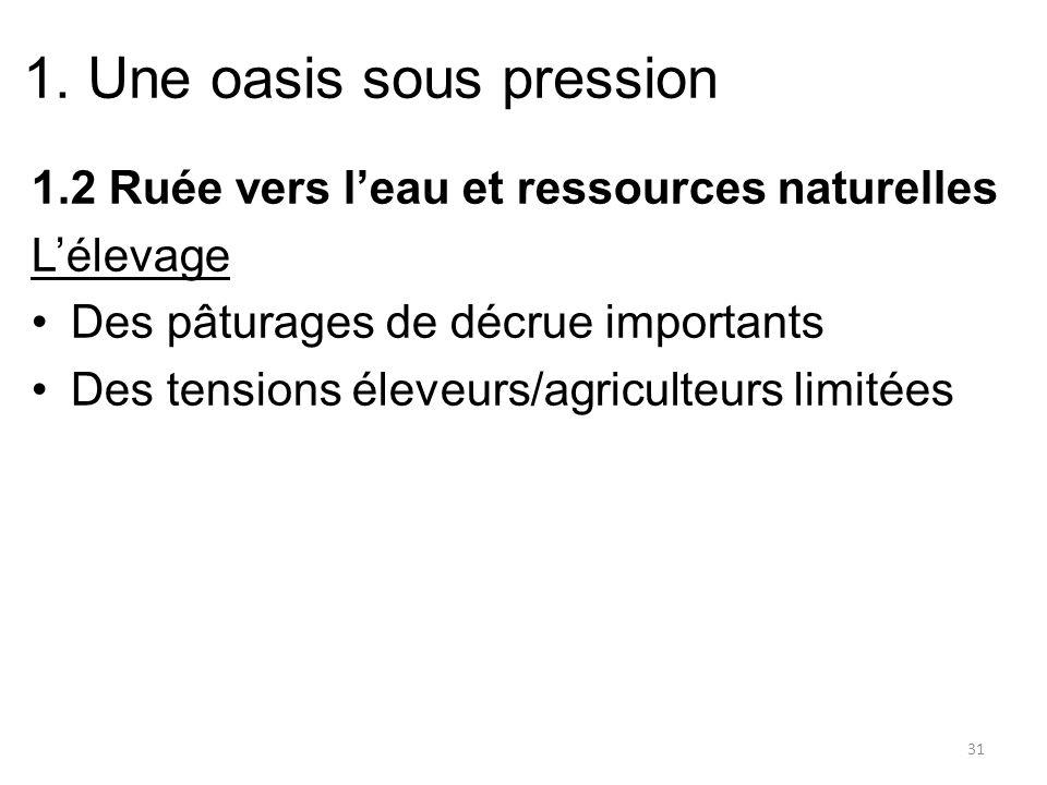 1. Une oasis sous pression