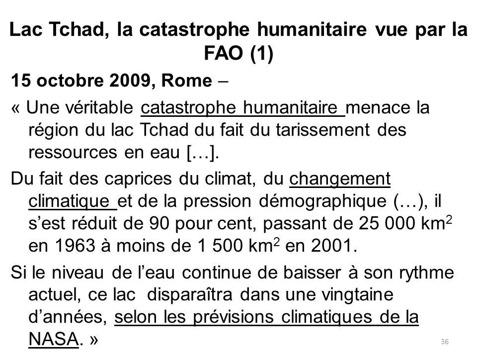 Lac Tchad, la catastrophe humanitaire vue par la FAO (1)