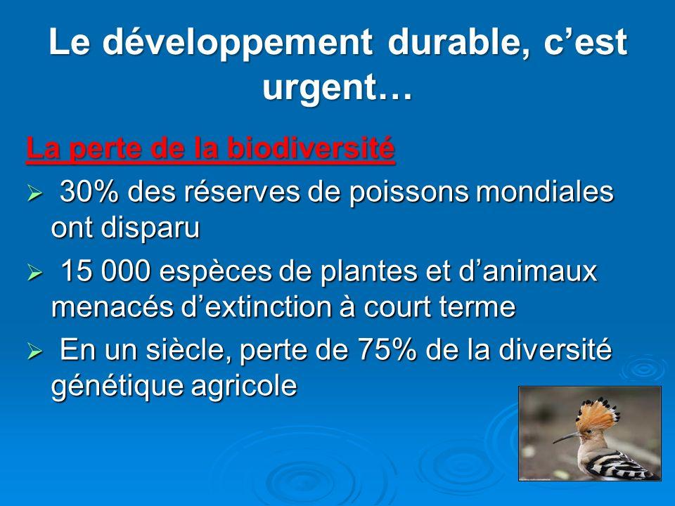 Le développement durable, c'est urgent…