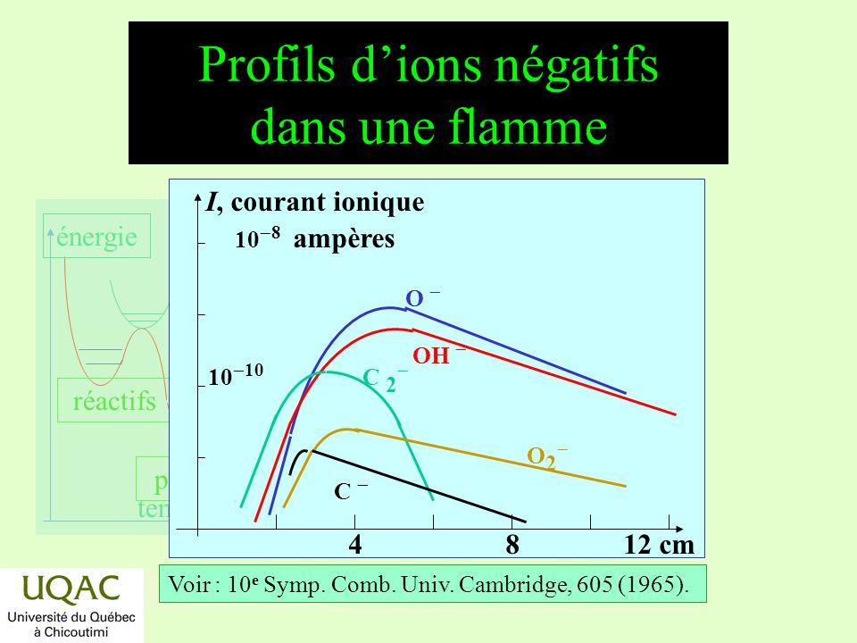 Profils d'ions négatifs dans une flamme