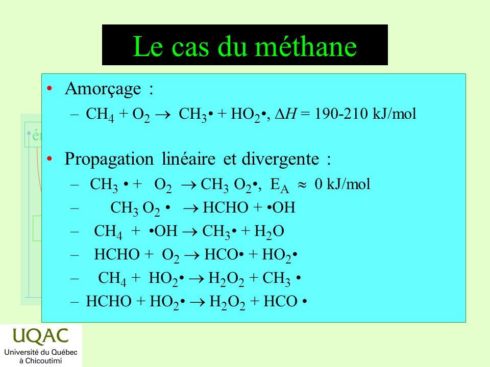 Le cas du méthane Amorçage : Propagation linéaire et divergente :