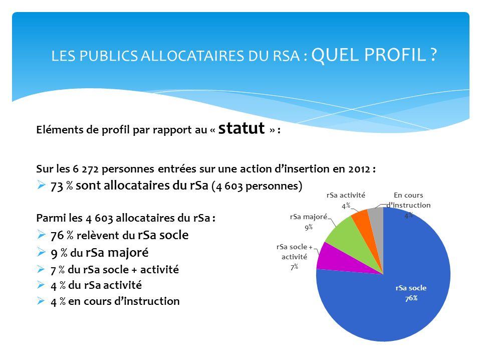 LES PUBLICS ALLOCATAIRES DU RSA : QUEL PROFIL