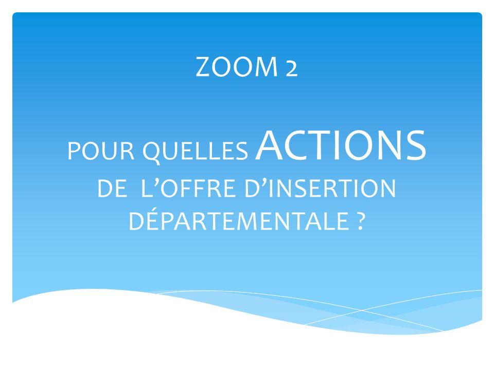 ZOOM 2 POUR QUELLES ACTIONS DE L'OFFRE D'INSERTION DÉPARTEMENTALE