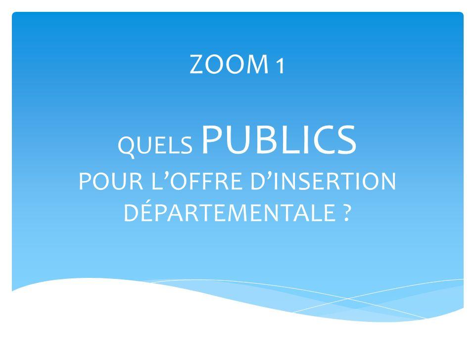 ZOOM 1 QUELS PUBLICS POUR L'OFFRE D'INSERTION DÉPARTEMENTALE