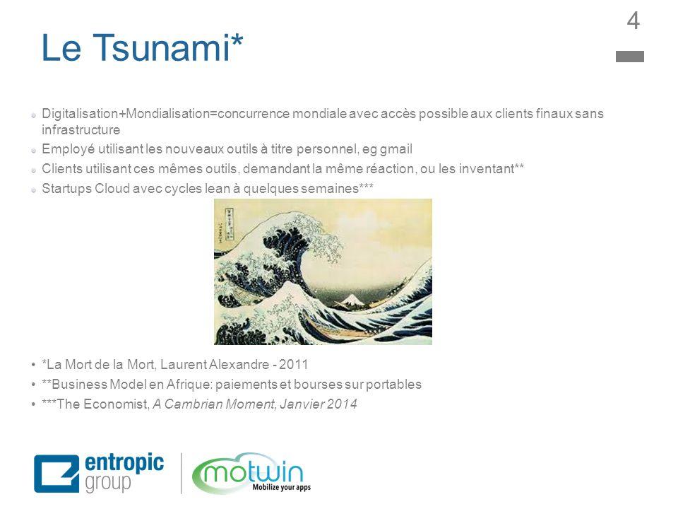 4 Le Tsunami* Digitalisation+Mondialisation=concurrence mondiale avec accès possible aux clients finaux sans infrastructure.