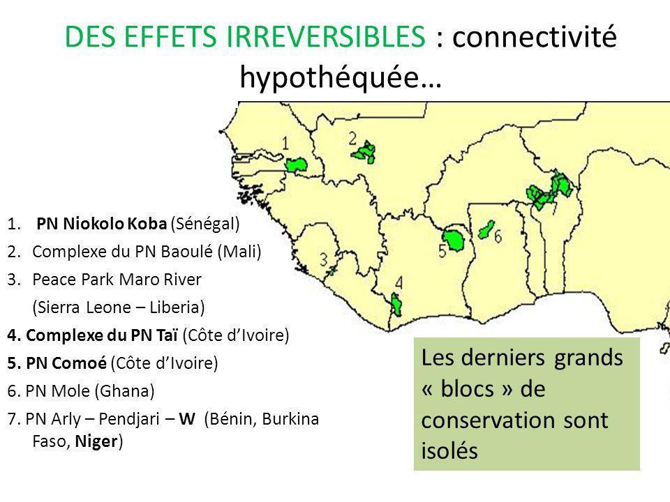 DES EFFETS IRREVERSIBLES : connectivité hypothéquée…
