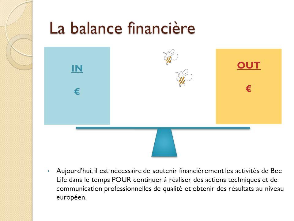 La balance financière OUT IN € €