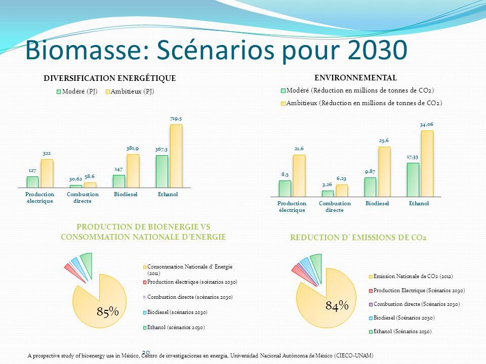 Biomasse: Scénarios pour 2030