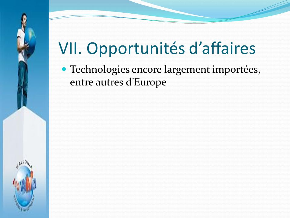 VII. Opportunités d'affaires