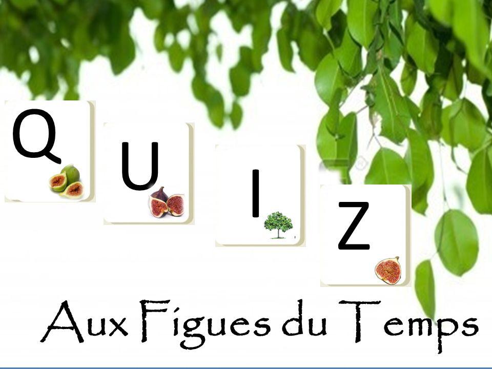 Q U I Z Aux Figues du Temps