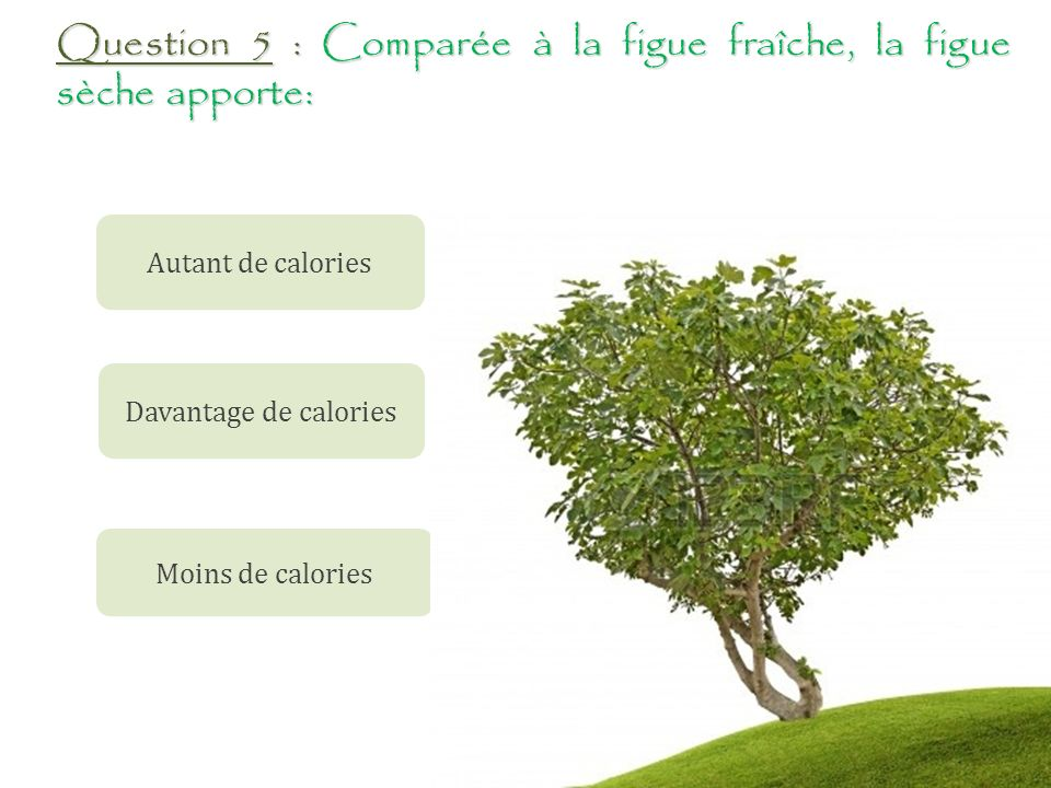 Question 5 : Comparée à la figue fraîche, la figue sèche apporte: